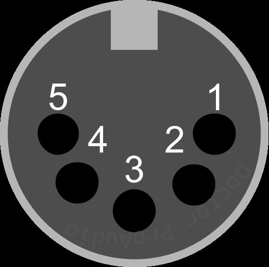 XL3 hembra