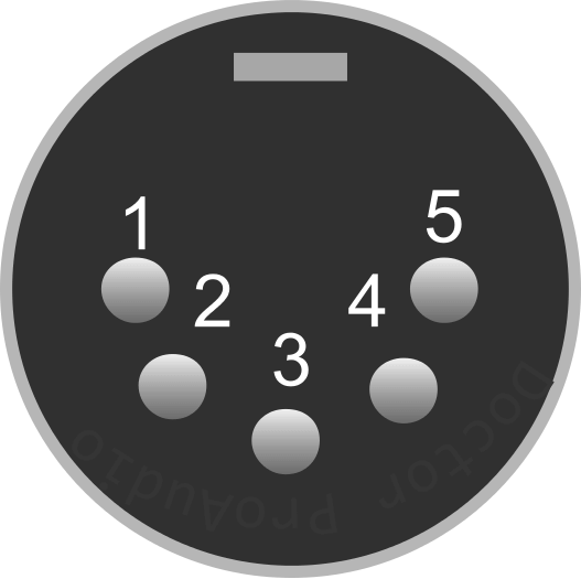 male XL5